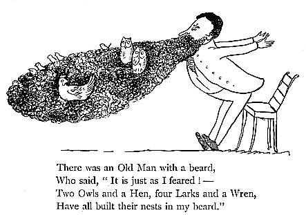 kids-edward-lear-owls-beard-limerick1